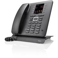 Vaste en IP-telefoons